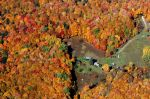 FALL_COLORS_2.jpg
