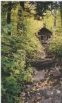 Greenstone_Falls_Cottage_Fall_Color_Tour_001.jpg