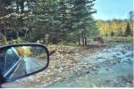Ottawa_National_Forest_back_road.jpg