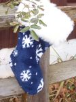 Frost on the stocking.JPG